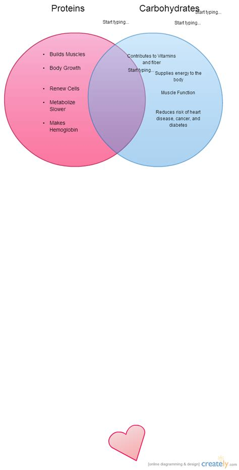Proteins and Carbohydrates Outline ( Venn Diagram) | Creately