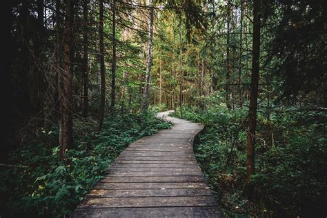 Resource Management: Lost in the Woods? Here is Your Way